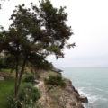 Toscana 608 (40)