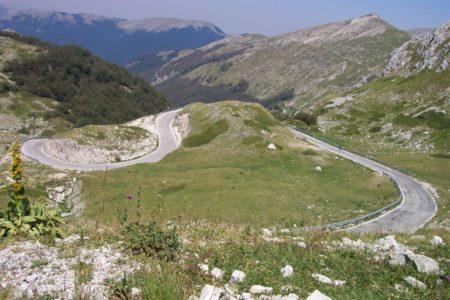 Lazio 768 006